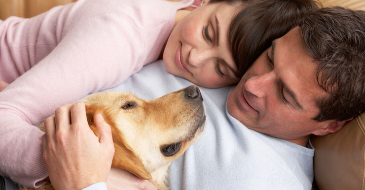 In Home Pet Euthanasia
