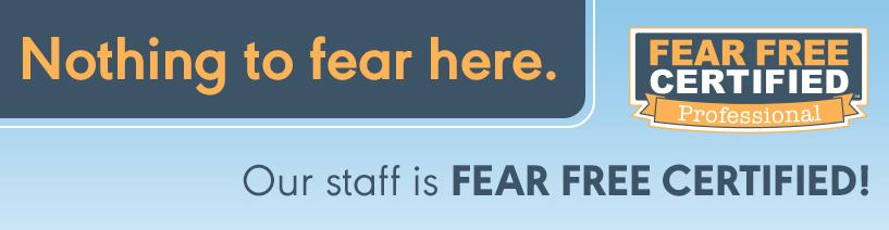 fear free verterinary care